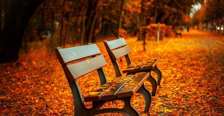 sentiments d'automne
